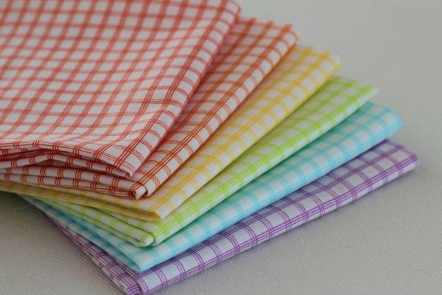 Citrus Check Windham Fabrics