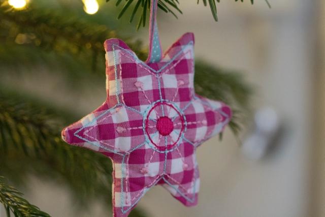 Weihnachtsstern pink